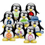 Sistemista Linux